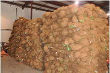 Picture of BioD-Watl coir wattles in storage.
