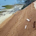 Slope stabilization with BioD-Mat 60 woven bristle coir erosion control blanket (600 g/sq.m.)