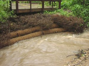Application of BioD-Roll 30H ( 12 in diameter) coir logs.