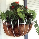 Coir liner for hanging baskets