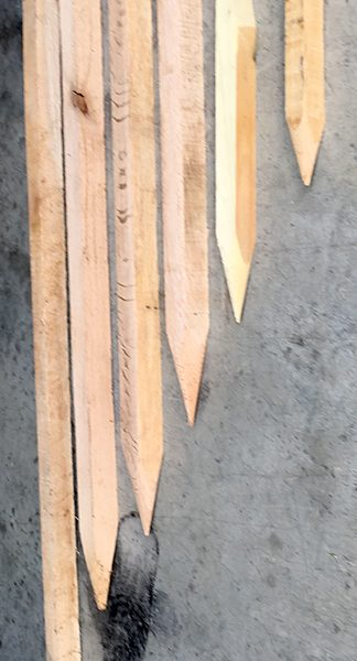 Oak stakes comes in different lengths