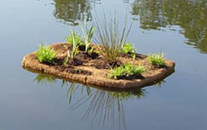 Floating islands with coir pillows.