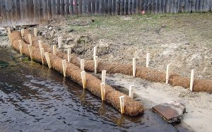 Coir log installation with pine wedges.