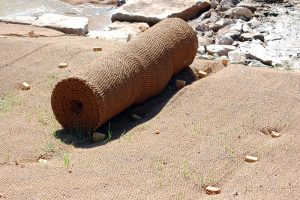 Picture of a woven bristle coir erosion control blanket.