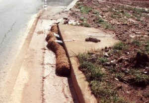Coir wattles for sediment control in curb inlets.
