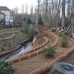 Successful restoration of eroded back yard stream in McDonough, GA with BioD-Mat bristle coir blankets, coir logs and coir wattles.