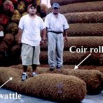 Picture to show the difference between coir wattles and coir logs.Coir logs (rolls) are densely-packed to provide strong support and coir wattles are lightly-packed to filter sediment.