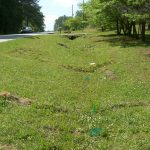 Vegetated channel restoration with BioD-Mat heavy duty erosion control blanket and BioD-Watl coir wattles.