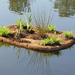 Floating islands with coir pillows for fish habitat improvement.