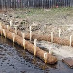 Beach restoration with BioD-Roll coir logs.
