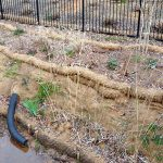 Streambank stabilization with BioD-Mat 70 blanket with BioD-Watl coir logs.
