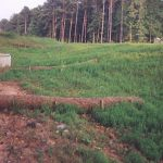 Slope stabilization with coir wattles.