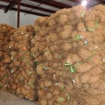 Large inventory of coir wattles in Stockbridge, GA