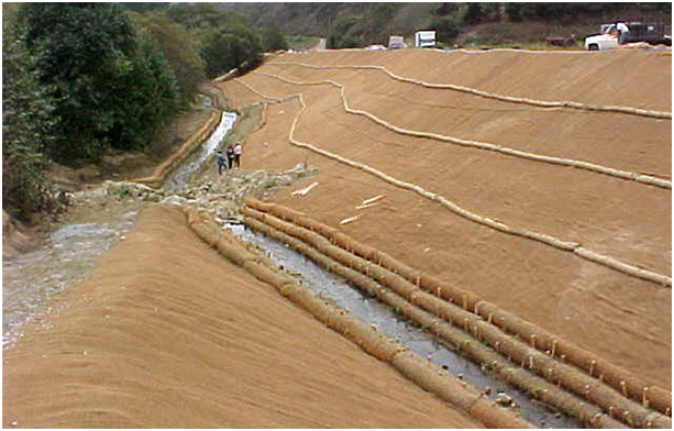 Why Coir Is The Best Biodegradable Erosion Control Choice
